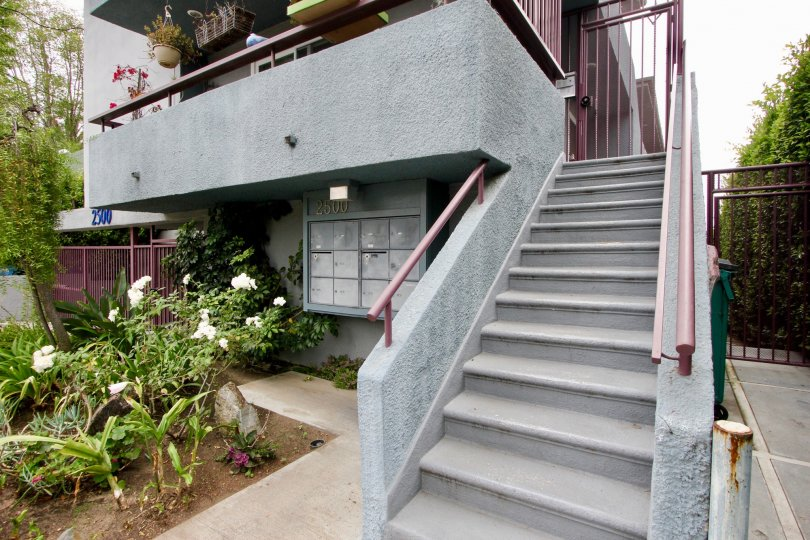 Entrance with lovely garden with small plants of an apartment in 2500 4th St in Santa Monica California