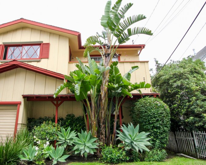 An elegant and simple home with many plants in the front yard in 5th St Condominiums community