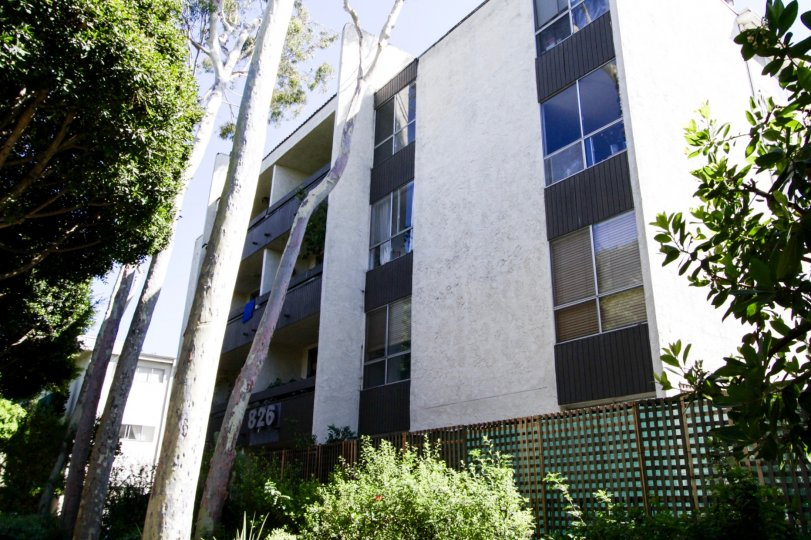 The building at 826 2nd Street in Santa Monica