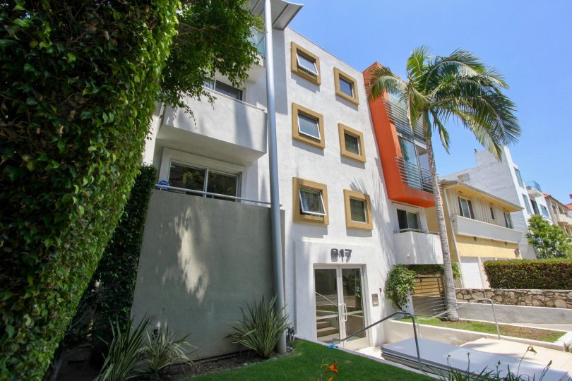 Front of a four story 917 2nd street building with palm trees on a sunny day