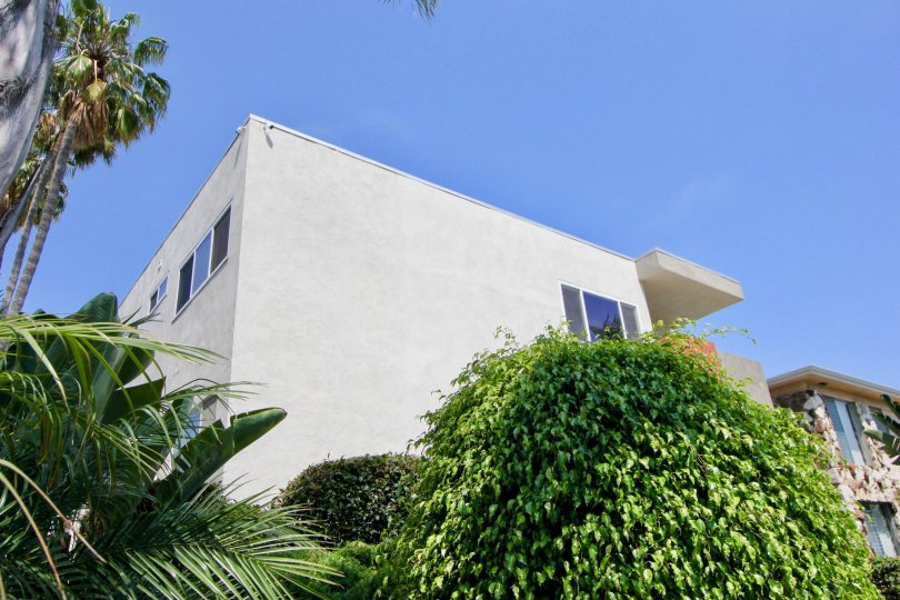 Big white building in santa monica with blue windows