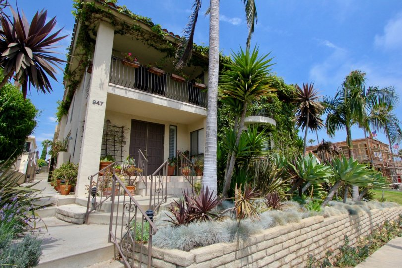 A beautiful two-story apartment in Santa Monica with palm trees