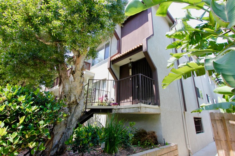 Modern looks and environmentally compliant looks of Blue Grass Manor, Santa Monica, california