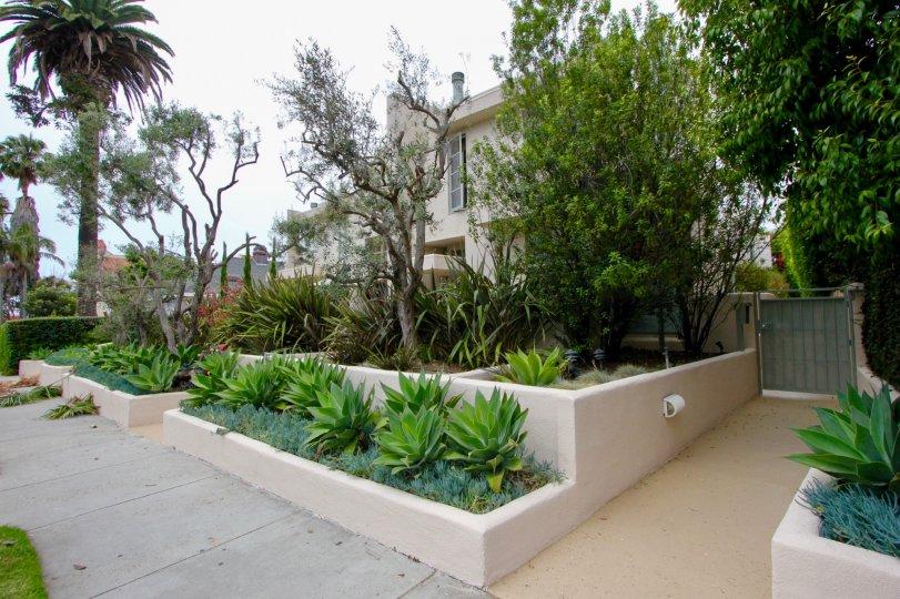 Casa Bay's quality entrance, Santa Monica, california