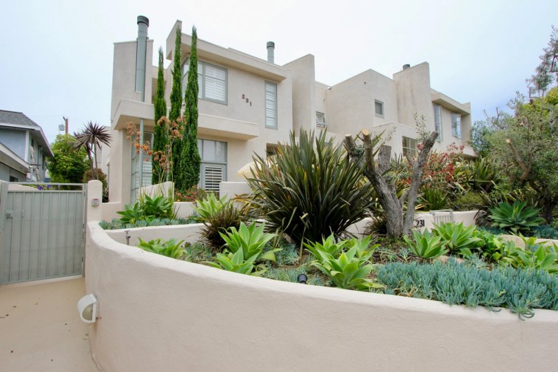 A house in casa day should be look like very rich because of it's decoration by plants.