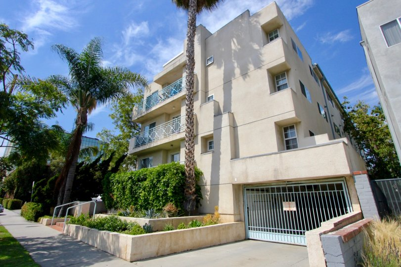 Tall Palms and a paradise feeling at the Imperial in Santa Monica