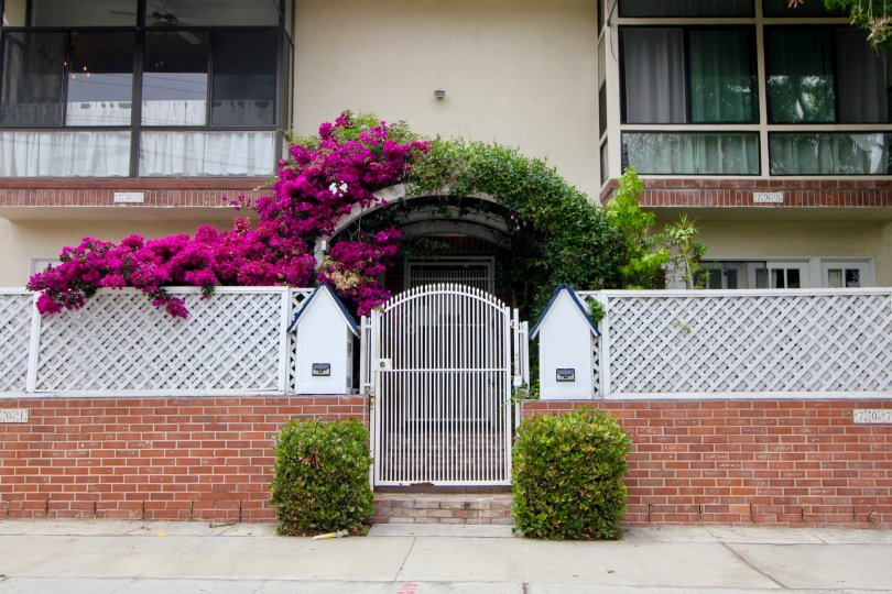 Street front of a residence in the La Belle Monique community with pink flowers and white fence