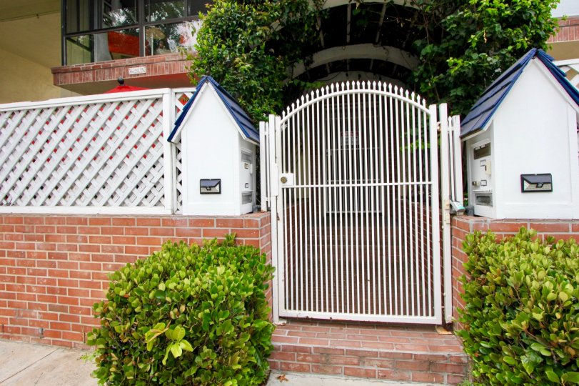 THE WALL WITH GATE AND INSIDE A HOUSE ALSO AVAILABLE WITH GREEN PLANTS ROOF NEAR TO THE DOOR AT MORNING TIME