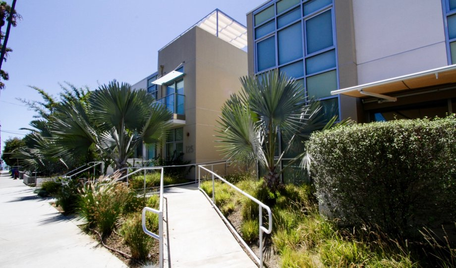 The scenery around Neilson Way Townhomes located in Santa Monica