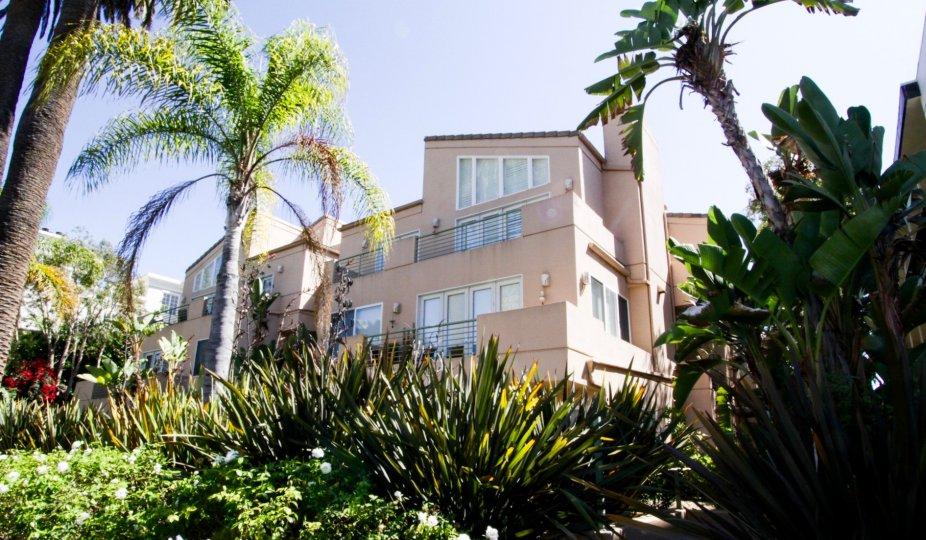The view of the Ocean Regency in Santa Monica