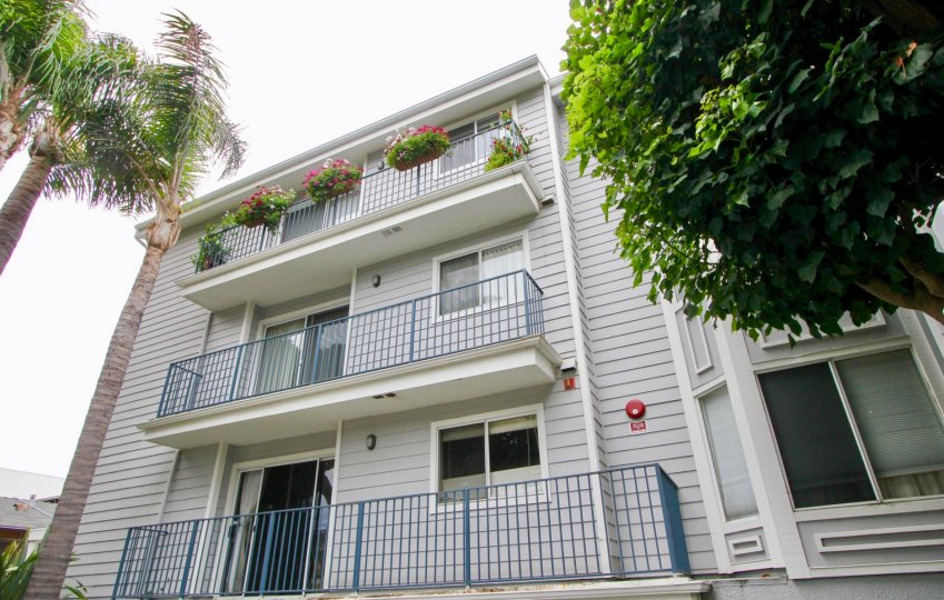 house with flower pots on balcony in Pacific Gardens