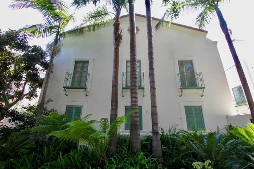 White house with green trim and palm trees in Santa Monica, California