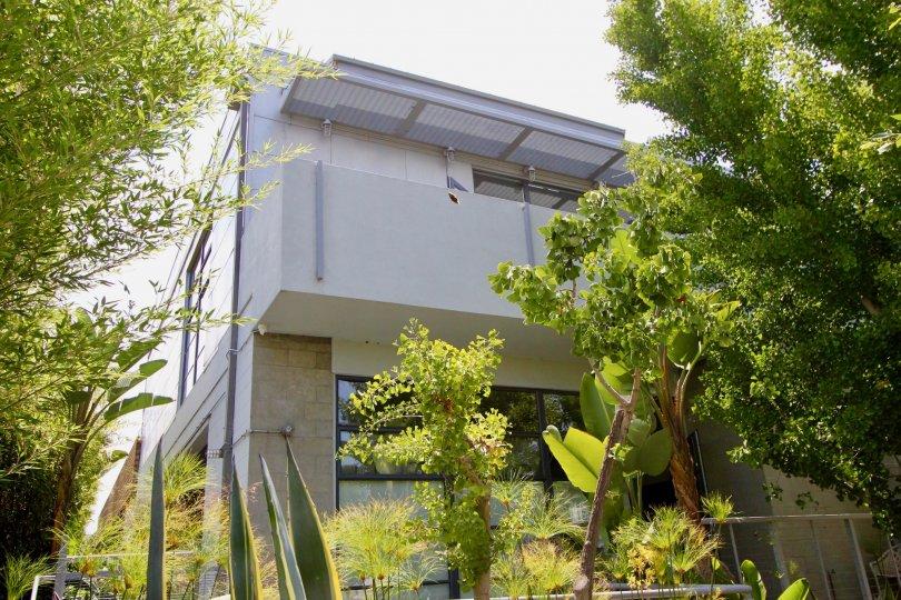 Very green and eco friendly neighborhood of Santa Monica Art Lofts, Santa Monica, california
