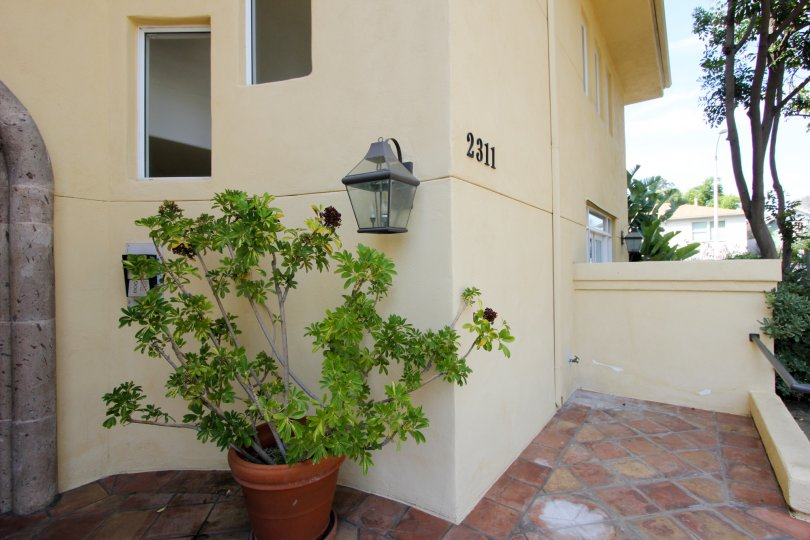 A clean and pleasing patio with tiled pavers, concrete walls, and an inviting potted plant