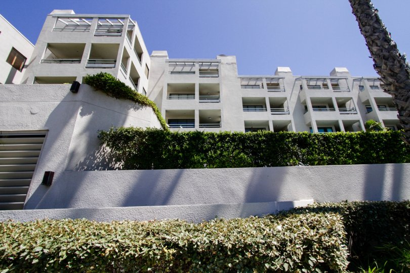 The Sea Colony III building in Santa Monica