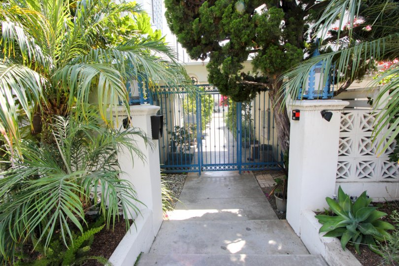 A blue gate entrance with shrubbery at The Mediterranean in Santa Monica, CA