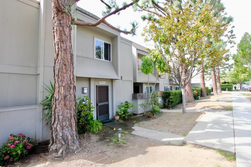 A quiet street of townhomes at The Woods in Santa Monica.