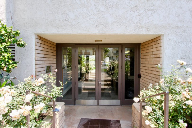Entry of a big building in santa monica with brown door with glasses