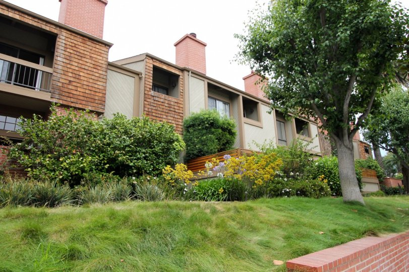 A serene Santa Monica community living space with great landscaping.