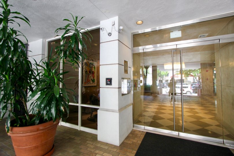 The fornt portion of a big apartment in the Wilshire Ocean Terrace with glass doors, windows and a small plant.