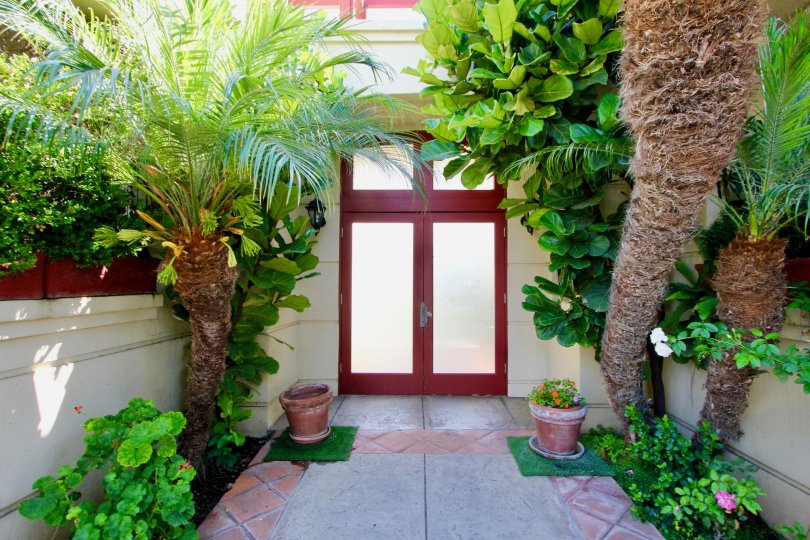 Entryway leads to French doors of warm wood and white panels. Trees and plants line a tiled walk and frame the door.