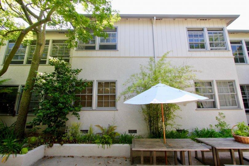 Amazingly and beautifully green yale street Apartment, Santa Monica