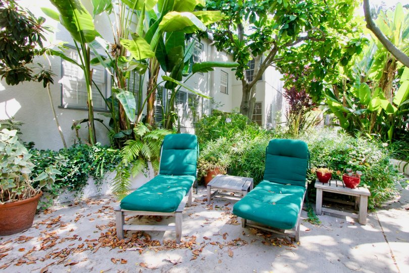 A best house to relax in sun in Yale streer Santa Monica California