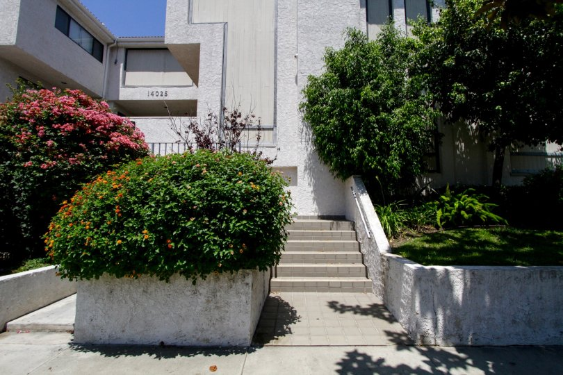 The stairs up to 14025 Riverside Dr