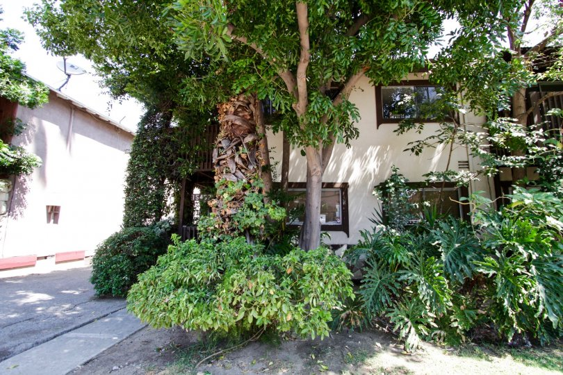 The landscaping seen at 15457 Moorpark St