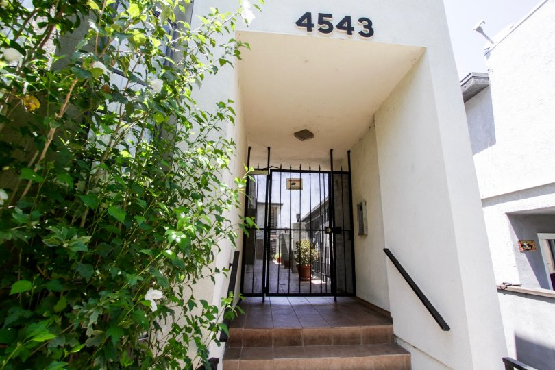The entrance into 4543 Willis Ave in Sherman Oaks