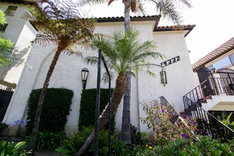 The landscaping around Dickens Street Townhomes in Sherman Oaks