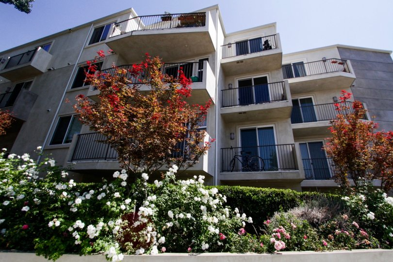 The balconies seen at the Killion Condos in Sheman Oaks