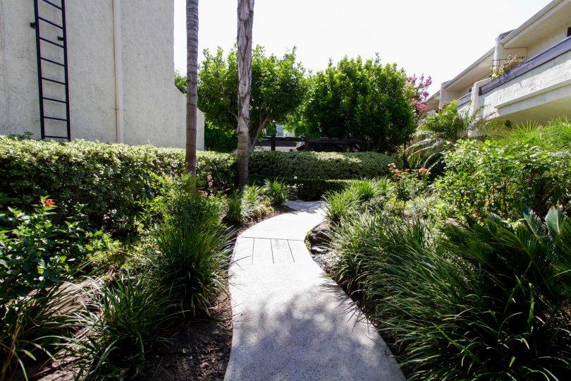 The sidewalk through the Sherman Oaks Courtyard in Sherman Oaks
