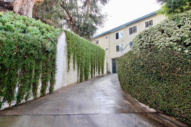 The driveway up to Rancho Los Feliz in Silver Lake, California