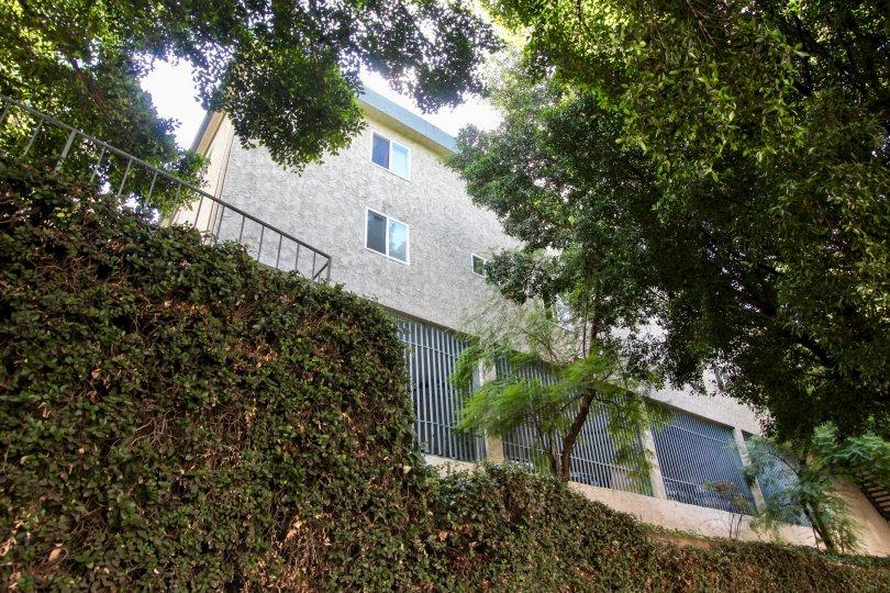 The landscaping around Rancho Los Feliz