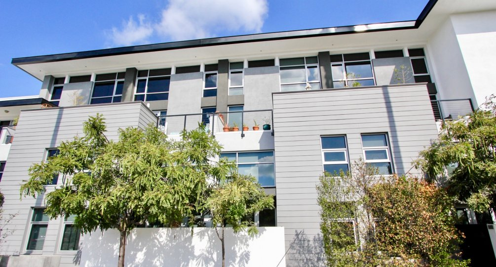The view of Sunset Silver Lake Lofts in Silver Lake, California