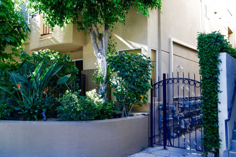 The gate to the side of 12633 Moorpoark in Studio City