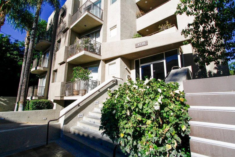 The stairs leading up to the entrance of 4236 Longridge Ave in Studio City