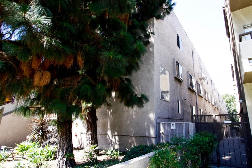 The Bluffside Townhomes building in Studio City