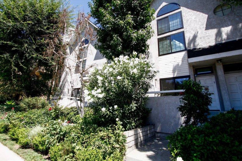 The landscaping around Colfax Gardens in Studio City
