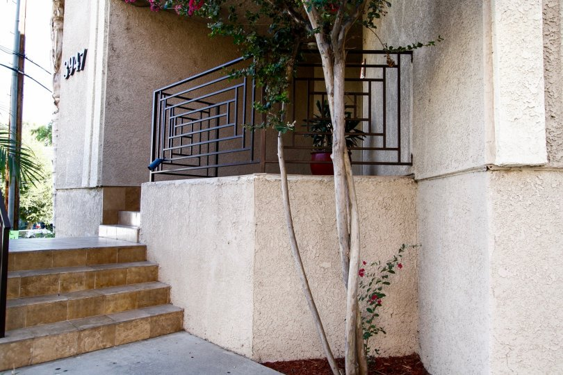 The stairs leading up to the Studio Vista Living