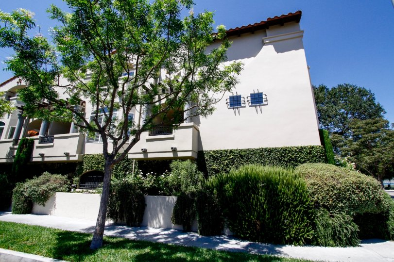 The landscaping at the Villas at Colfax in Studio City