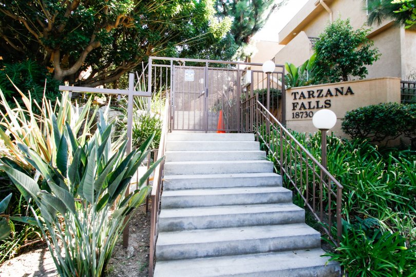 The stairs leading up to Tarzana Falls