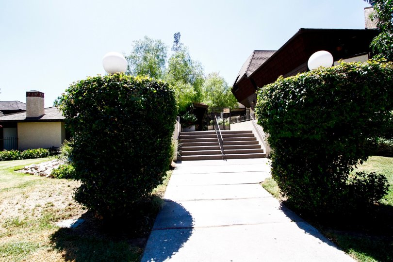 The walkway up to Parkwood Van Nuys in Van Nuys