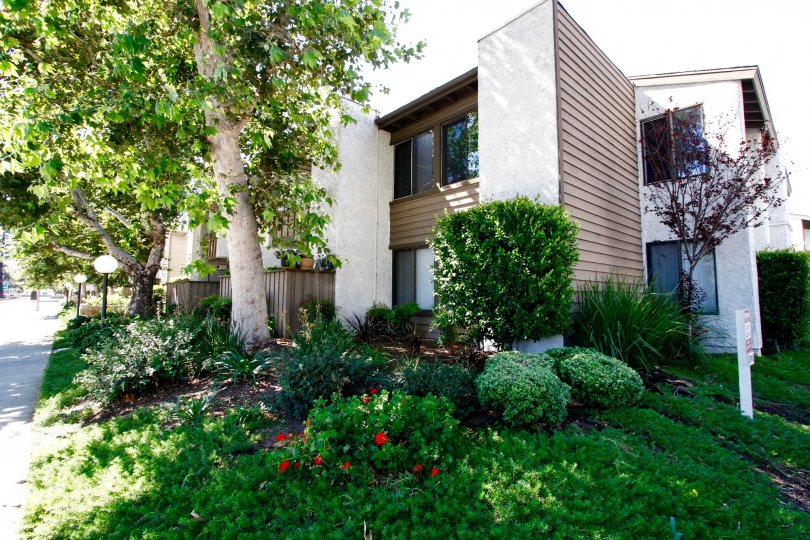 The landscaping for Valley Oaks I in Van Nuys