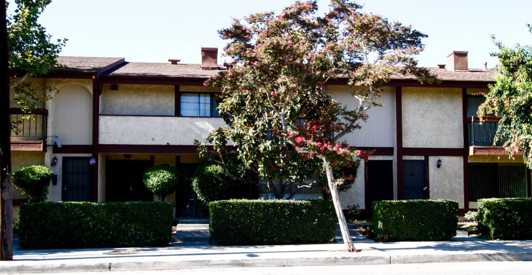 The hedges around Vanowen Forbes Townhomes in Van Nuys