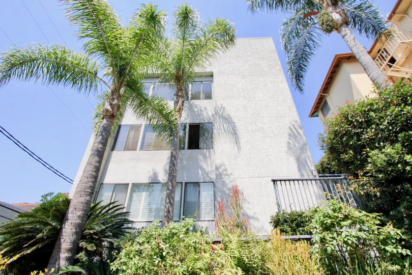 1021 Westmount, west hollywood, California is A beautiful sky high well construct building which have white colour and shiny bright glass window. Lots of green trees enhance its beauty. A sunny bright day give it an amazing look.