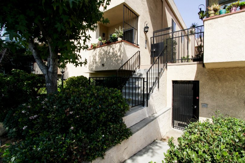 The stairs up to 1040 N Gardner