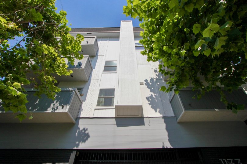 1133 Clark and her nice walls and trees, West Hollywood, California