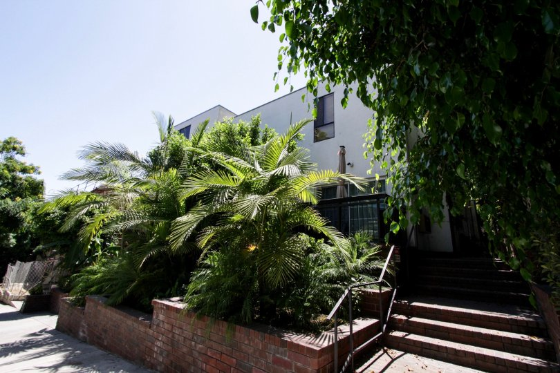 The entrance into 1433 N Harper in West Hollywood